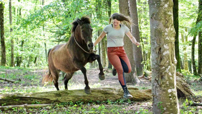 lia waelti pferdetrainerin an der oelehof akademie