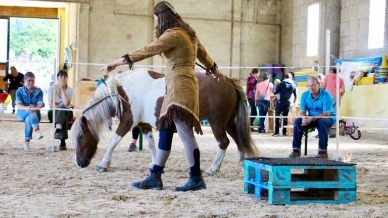 lia wälti pferdetrainerin an der oelehof akademie